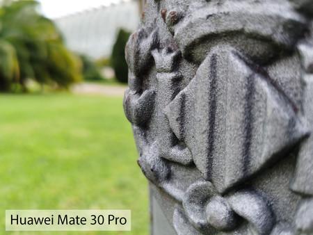 Huawei Mate 30 Pro Macro Dia 03