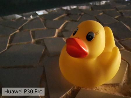 Huawei P30 Pro Macro Night 01