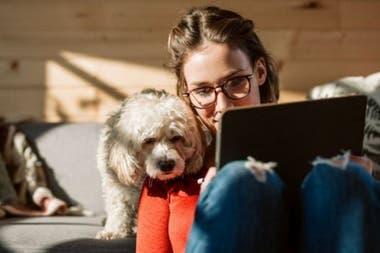 Прежде чем соглашаться на работу из дома, убедитесь, что у вас хорошее интернет-соединение