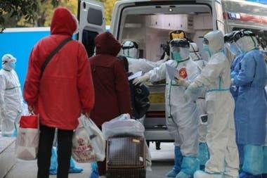 Органы здравоохранения полмира работают против времени, чтобы сдержать вирус